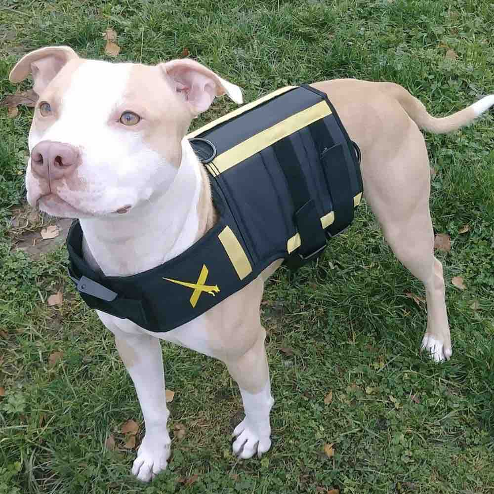 Picture of the Xdog Dog Weight Vest
